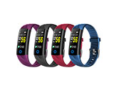 0.96 Inch Smart Fitness Band